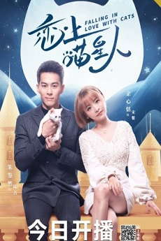 FastDrama Falling in Love With Cats - 恋上喵星人