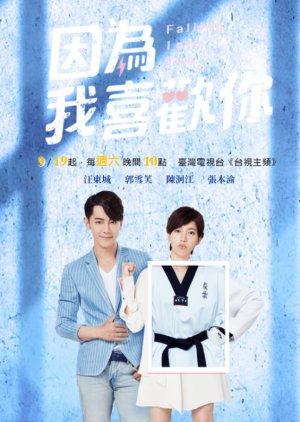 FDrama Falling Into You - 因為我喜歡你