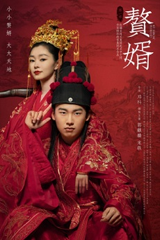 My Heroic Husband (Cantonese) - 贅婿 dramaup